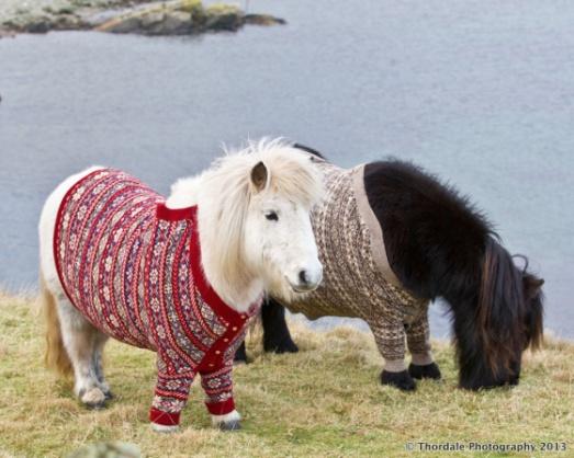 shetlandsweaters